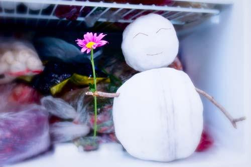 Réfrigirateur
